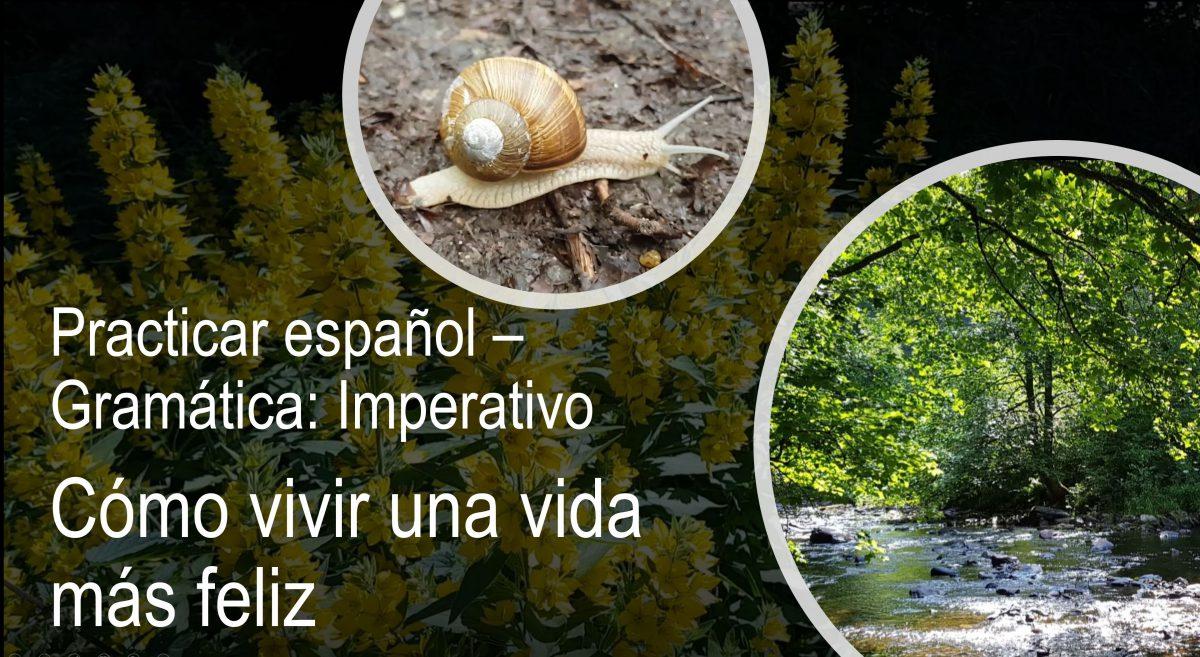 Practicar español – Gramática: Imperativo Cómo vivir una vida más feliz