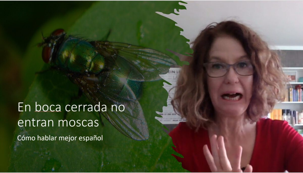 Cómo hablar mejor español: En boca cerrada no entran moscas